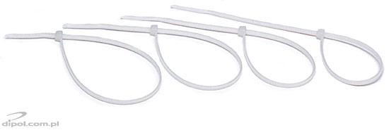 Cable Tie TZ20/3Ns (white)